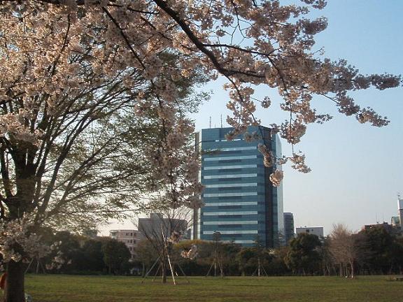 20080405-2.jpg
