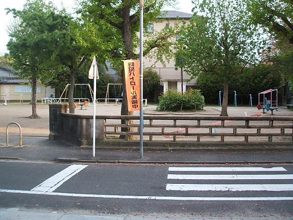 20090417-3.jpg