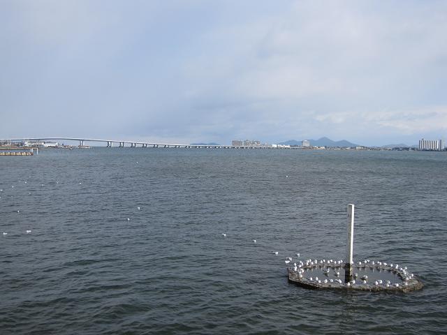 20100102-3.jpg