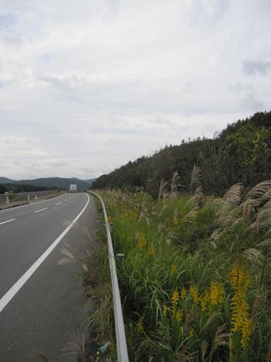 20101029-3.jpg